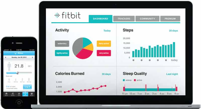 Fitbit Aria dashboard review